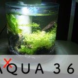 GEX AQUA 360R 円筒型水槽 感想 レビュー アクアリウム 熱帯魚