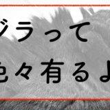 ゴジラ作品 シリーズ分け 解説