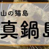 猫島 真鍋島 まったりとした時間 素敵な島 岡山 旅行 日記