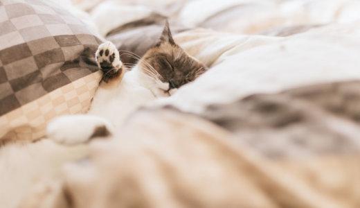 睡眠は育毛をはじめ、健康に大きく影響します!適切な睡眠時間や良質な眠りの為に大事なのは!?